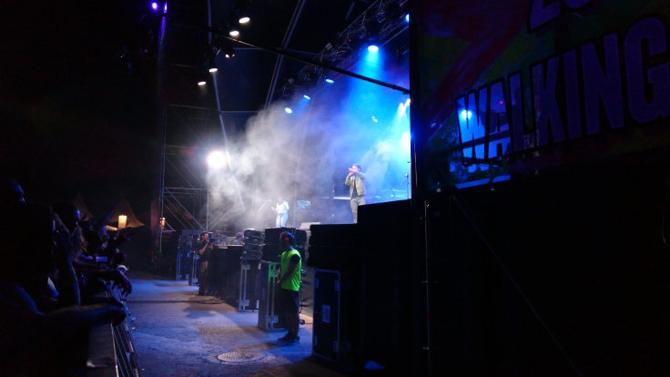 Protoje performing on the main stage